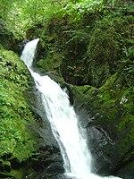 Dolgoch Falls - 2007-09-01.jpg