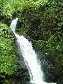 Waterfall Wednesdays:  Dolgoch Falls