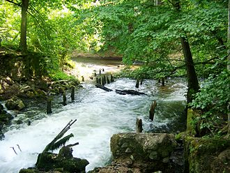 Drawa National Park in Poland, famous for its canoeing routes Drawienski Park Narodowy - ruiny Wegorni.jpg