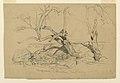 Drawing, Studies. Trees, Santa Barbara, California, February 3, 1888 (CH 18368885).jpg