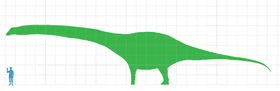 Dreadnoughtus scale.png
