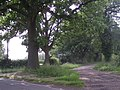 Driveway to Mitton Lodge - geograph.org.uk - 847722.jpg