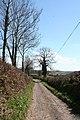 Dulverton, Combe Lane - geograph.org.uk - 154700.jpg