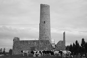 Croom, County Limerick - The round tower