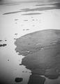 ETH-BIB-Ufer des Tschadsee-Tschadseeflug 1930-31-LBS MH02-08-0797.tif
