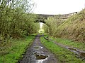 Ecklands bridge crosses the Trans Pennine Trail - geograph.org.uk - 1277679.jpg