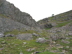 Eglwyseg - Creigiau Eglwyseg, where several nationally rare plants can be found.