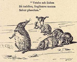 Edward Hamilton Aitken - Illustration of the habits of Suncus murinus