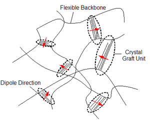 Electroactive polymers - Figure 2: Cartoon of an electrostrictive graft polymer.