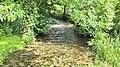 Ellecourt - La Méline - IMG 20200613 135800.jpg