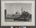 Environs du Kaire (Cairo). Vue du port et de la grande mosquée de Boulâq (NYPL b14212718-1268736).tiff