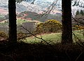 Eskdale Framed and Coloured 4.jpg