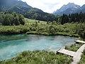 Estany de Zalenci, Eslovènia (agost 2013) - panoramio (1).jpg