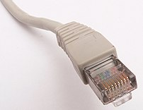 A standard Ethernet cable.