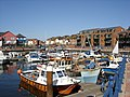 Exmouth harbour - geograph.org.uk - 1036526.jpg