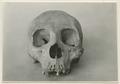 Föremål från Museo Arqueologico e Historico, Merida - SMVK - 0307.k.0042.tif