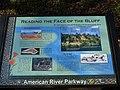 Fair Oaks, CA bluffs 988 - panoramio.jpg