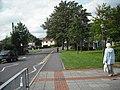Farm Road, Street. - geograph.org.uk - 1475849.jpg