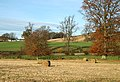Farmland by the River Tweed - geograph.org.uk - 1051828.jpg