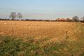 Farmland near Eastwell - geograph.org.uk - 632896.jpg