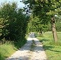 Feldweg - panoramio (7).jpg