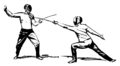 Fencing (PSF).png