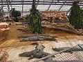 FermeAuxCrocodiles3.JPG