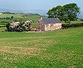 Fields and ruin near Holywood - geograph.org.uk - 824345.jpg
