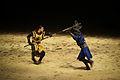 Fight (2287190763).jpg