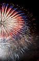 Fireworks (6609754503).jpg