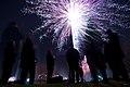 Fireworks in Kista, NewYear's Eve 2013.jpg