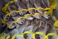 fish in the seafood section in the Han Ah Reum...