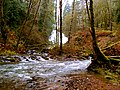Fishhawk Falls (8238609100).jpg