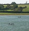 Fishing boats on Rutland Water - geograph.org.uk - 1001105.jpg