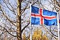 Flag of Iceland 03.jpg