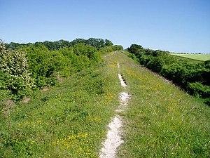 Fleam Dyke - Fleam Dyke approaching Mutlow Hill