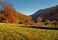 Flickr - Nicholas T - Golden Eagle Trail (2).jpg