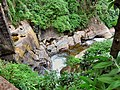 Flickr - ronsaunders47 - A STREAM IN SRI LANKA..jpg