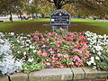 Flowerbed, The Square, Nantwich.JPG