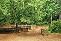 Font de l'Alzina - panoramio.jpg