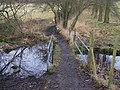 Footbridge in Boughton Manor Land - geograph.org.uk - 1131126.jpg