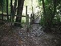 Footbridge over unknown stream in unknown wood - geograph.org.uk - 1531761.jpg