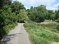 Footpath, Hampstead Heath - geograph.org.uk - 1511992.jpg