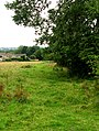 Footpath - Bradford Road, Burley - geograph.org.uk - 911289.jpg
