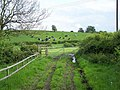 Footpath Off Hollow Lane - geograph.org.uk - 434368.jpg