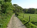 Footpath near Broomhill Manor, Poughill - geograph.org.uk - 1348933.jpg