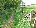 Footpath to Woodville - geograph.org.uk - 818138.jpg