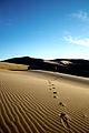 Footsteps (3871185199).jpg