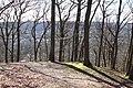 Forêt Départementale de Beauplan à Saint-Rémy-lès-Chevreuse le 14 mars 2018 - 14.jpg