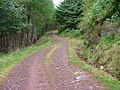 Forest Road - geograph.org.uk - 546151.jpg